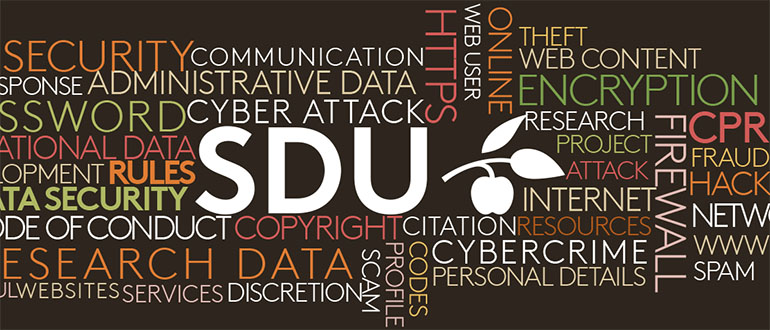 Data protection at SDU
